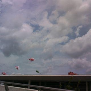 Marina Barrage 101031 010